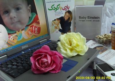 http://artin1389.persiangig.com/baby%20einstein.jpg